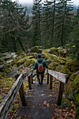 Canada, British Columbia, Squamish, Man hiking along trail