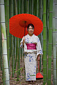Portrait beautiful young woman in Japanese kimono with parasol among bamboo