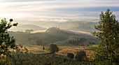 Countryside view, vineyards in Tuscany