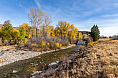 USA,Idaho,Sun Valley,Autumn landscape with river and yellow trees