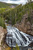 USA,Wyoming,Yellowstone National Park,Gibbon Falls on the Gibbon River in Yellowstone National Park