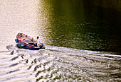 Fishermen in fishing boat on their way home on the Rhine in the evening sun, Bad Honnef, North Rhine-Westphalia, Germany