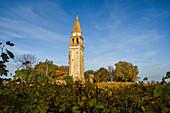 Old church tower in the vineyard on Mazzorbo island, Burano, lagoon, Veneto, Italy