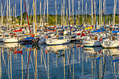 In the morning in the marina of La Forêt-Fouesnant, Brittany, France, Europe