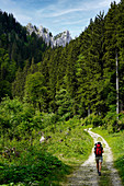 On the way to Hasentalkopf in the Ammergau Alps, Bavaria, Germany, Europe