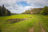 Former inner-German border between Thuringia and Bavaria near Eisfels, Thuringia, Germany