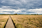 Footbridge in the Dühnen behind the dike at Cappel-Neufeld in the evening light, Cappel, Lower Saxony, Germany