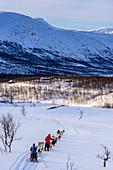 Dog sledding tour near Indset, Björn Klauer's husky farm, Bardufoss, Norway