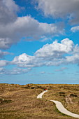 Two people on a hiking and cycling path that leads from the Ameland lighthouse to the beach, near Hollum, Ameland, West Frisian Islands, Friesland, Netherlands, Europe