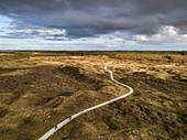 Luftaufnahme von zwei Radfahrern auf Wander- und Radweg durch die Dünen von Westerduinen, nahe Den Hoorn, Texel, Westfriesische Inseln, Friesland, Niederlande, Europa