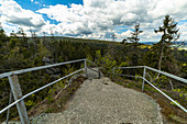 View from Weißmainfels to the coniferous forest in the Fichtelgebirge, Upper Franconia, Bavaria, Germany