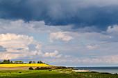 View of the steep coast of Schönhagen, Schwansen, Brodersby, Schleswig-Holstein, Germany