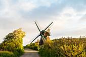Windmühle Charlotte in der Geltinger Birk, Ostsee, Naturschutzgebiet, Geltinger Birk, Schleswig-Holstein, Deutschland