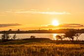 Sonnenuntergang in Sieseby an der Schlei, Abendstimmung, Schwansen, Thumby, Schleswig-Holstein, Deutschland