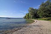 West bank of Lake Starnberg, near Niederpöcking, 5-Seen-Land, Upper Bavaria, Bavaria, Germany