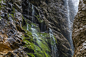 Waterfall over the moss-covered rock face in the Höllentalklamm, Grainau, Upper Bavaria, Germany