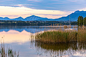 View over the calm water at the Aichale Bridge in the evening light to the Staffelsee, Murnau, Upper Bavaria, Germany
