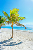 Smathers beach, Key West, Florida, USA