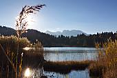 Autumn at Geroldsee, view to Karwendel, Werdenfelser Land, Bavaria, Germany