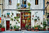 Fassade eines Terrassenhauses mit Pflanzen in einer Seitenstraße des Stadtteils Borne in Barcelona, Spanien