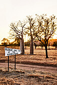 A welcome sign by a dirt track with boab trees in the background at sunrise at Diggers Rest Station, Wyndham, Western Australia, Australia.