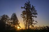 Sunbeams break through the autumn morning mist south of Regensburg, Bavaria, Germany, Europe