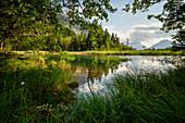 Summer evening at the Sieben Quellen, Eschenlohe, Bavaria, Germany, Europe