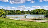 Summer afternoon at Zellsee near Weilheim, Bavaria, Germany, Europe