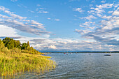 Summer afternoon on the Ammersee near Herrsching, Bavaria, Germany, Europe