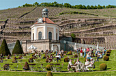 Belvedere building of the Saxon State Winery Schloss Wackerbarth in Radebeul, Saxony, Germany