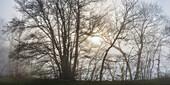 Sunrise, Upper Danube Nature Park, Swabian Alb, Baden-Wuerttemberg, Germany, Europe