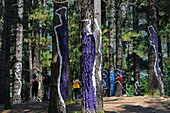 The painted forest of Oma is a LandArt project by the Basque artist Agustin Ibarrola, Oma Valley near Gernika, Urdaibai Biosphere Reserve, Basque Country, Spain
