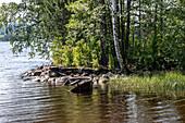 A broken wooden boat lies in the water at Fryken, Ivarsbjörke, Varmland, Sweden