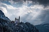 View of Neuschwanstein Castle in winter, Allgäu Alps, Allgäu, Bavaria, Germany, Europe