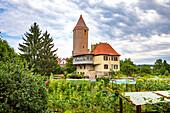 Nördlinger Tor und Stadtmühle in Dinkelsbühl, Bayern, Deutschland