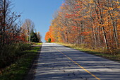 Country road in autumn, Canada
