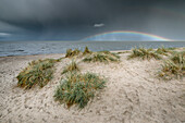 Sand dunes on the North Sea under storm clouds with rainbow, Schillig, Wangerland, Friesland, Lower Saxony, Germany, Europe