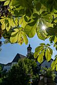 View of the monastery through a chestnut tree, Höglwörth, Chiemgau, Bavaria, Germany