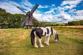 Windmill Ballstädt near Gotha, Thuringia, Germany