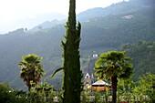 Near Algund near Meran, South Tyrol, Italy