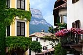 Girlan near Eppan with Monte Penegal, South Tyrol, Italy