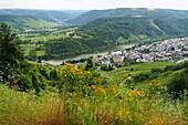 Via Kröv on the Moselle, Rhineland-Palatinate, Germany