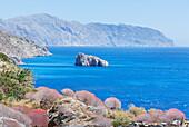 Amorgos island coastline, Amorgos, Cyclades Islands, Greece