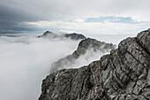 Steintalhörnl and Hocheisspitze rise above the fog, Berchtesgaden Alps, Bavaria, Germany