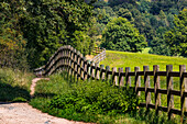 A natural path along a wooden fence leads between pastures and a forest