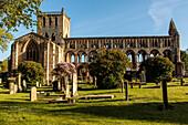 Jedburgh Abbey, Ruine Augustinerkloster, Abtei-Ruine, Scottish Borders, Schottland, UK