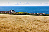 Cornfields on the coast at Banff, Findochty Church, Moray Firth, Aberdeenshire, Scotland, UK