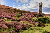 Chimney ruin in the flowering heather, Highlands, Scotland UK