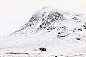Lagangarbh Cottage, lonely white house in the snow below Buachaille Etive Mor, Glencoe, Lochaber, Scotland, UK