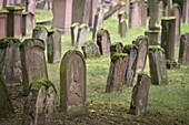 Old Jewish cemetery Judensand in Mainz, UNESCO World Heritage ShUM cities, Rhineland-Palatinate, Germany, Europe